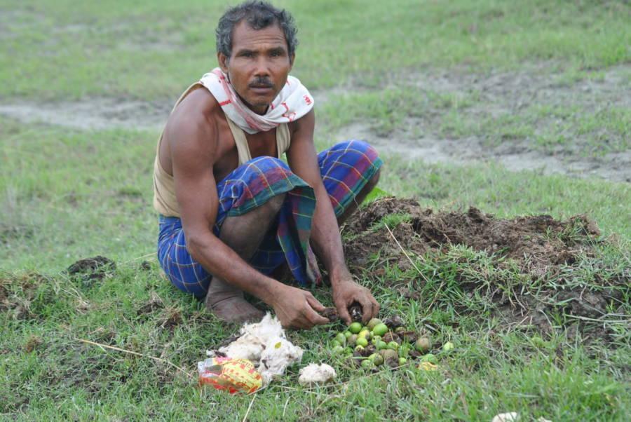Jadav Payeng, l'homme qui planta une foret.