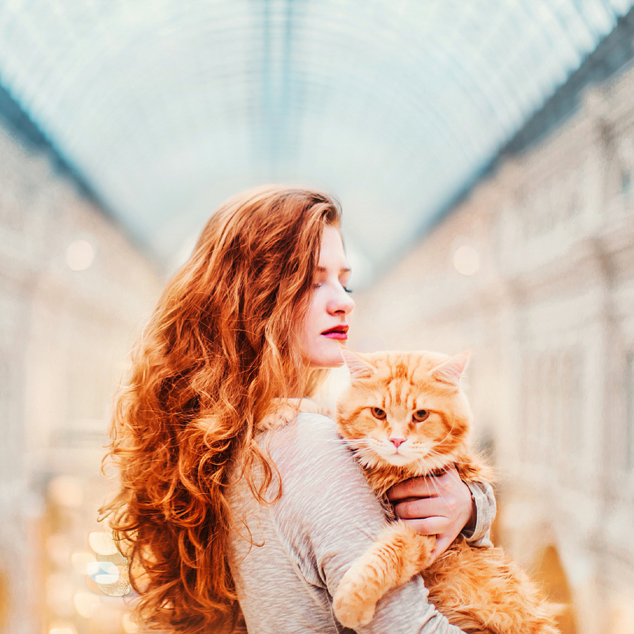 Kotleta le chat de Kristina Makeeva.