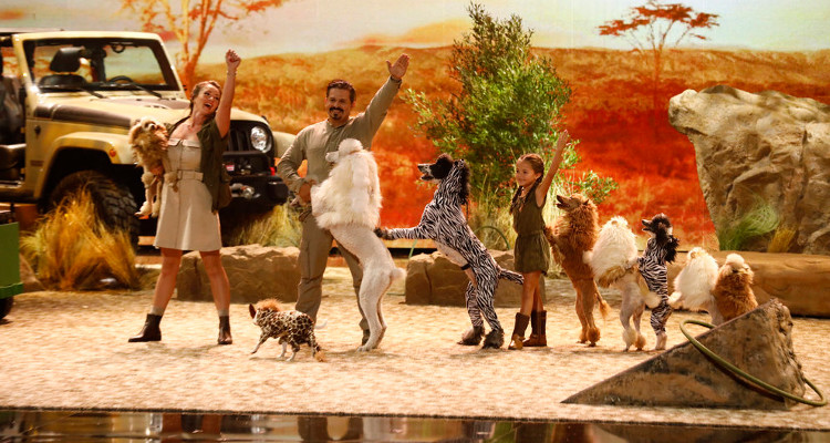 Les Pompeyo et leurs chiens.