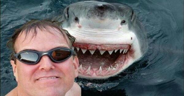 Des Selfies dangereux à ne pas reproduire.