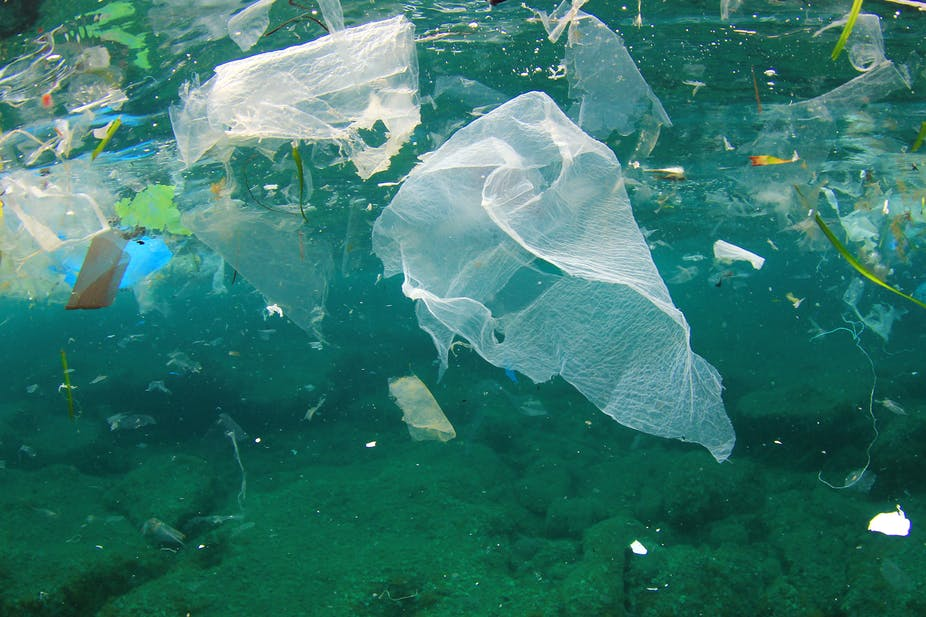 La pollution par le plastique.