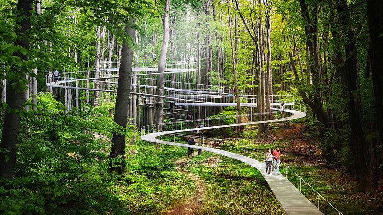 Le Parkorman d'Istanbul, une virée en forêt !