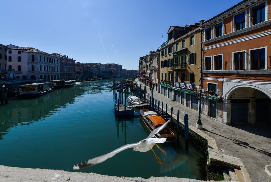 Les Canaux de Venise sans âme qui vive à part les mouettes.
