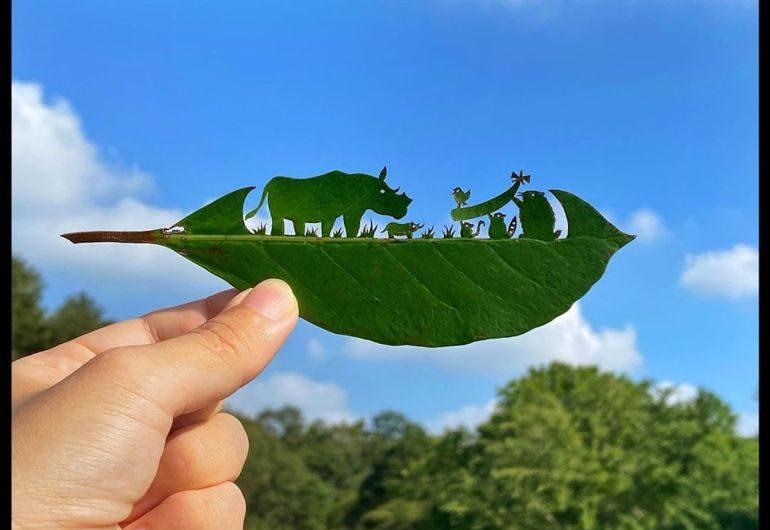 Des contes de fées sculptés sur les feuilles des arbres!