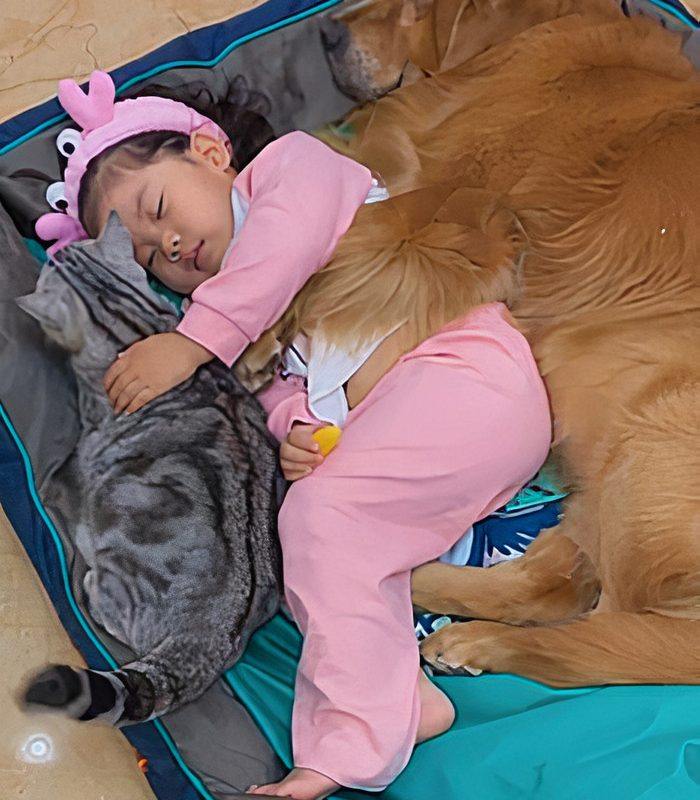 Un trio absolument adorable à l'heure de la sieste